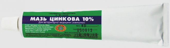ZINK OINTMENT 10%